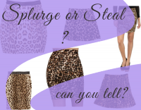 Splurge or Steal: Can you tell the difference?